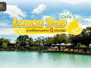 """ร้านคาเฟ่สดใสเปรี้ยวจี๊ด ริมทะเลสาบ@นครปฐม """" Lemon Tree cafe"""""""